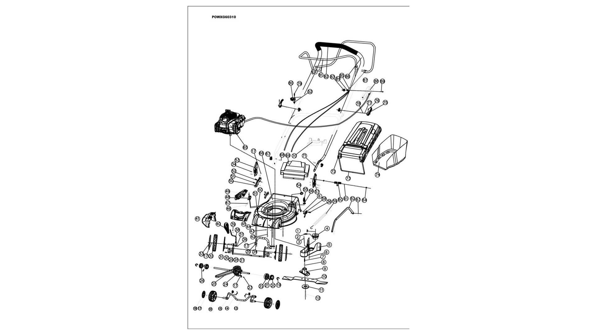 Powxg60310 Lawnmower 125cc 460mm Bs Champion 196cc Wiring Diagram Download Image